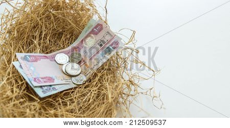 UAE currency notes in the bird's nest. Conceptual image for 'safe deposit' or 'secure investment'.