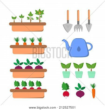 Set of gardening items with vegetables and tools