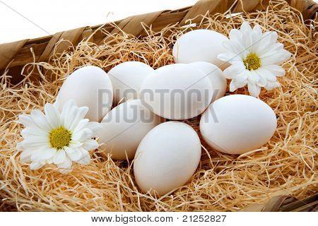Fresh Hen Eggs In The Basket