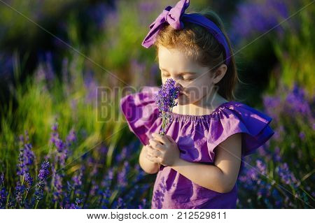 three year little girl sniffing flower summer park outdoors
