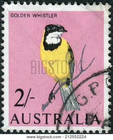 Australia - Circa 1965: Postage Stamp Printed In Australia, Shows Bird Australian Golden Whistler (p