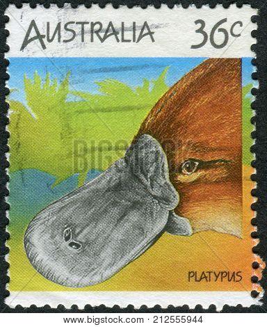 Australia - Circa 1986: Postage Stamp Printed In Australia Shows Platypus (ornithorhynchus Anatinus)