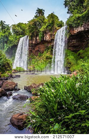 The Andean condors are circling in the sky above the water. Two powerful fairy waterfalls from Iguazu Falls in Argentina. The concept of extreme and ecological tourism