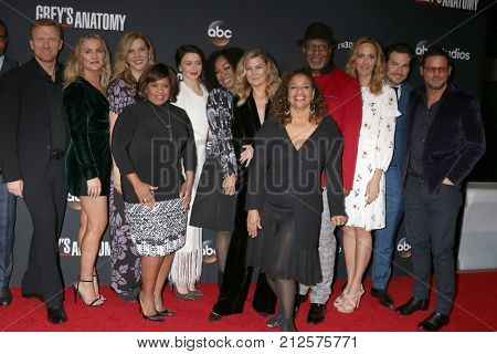 LOS ANGELES - NOV 4:  Greys Anatomy Cast at the