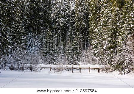 Wooden Bridge In Snowy Spruce Forest