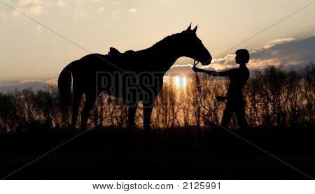 Evening Horseback Walks