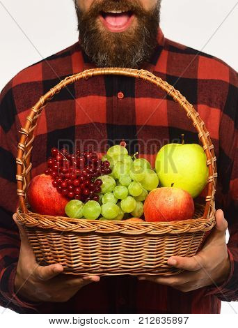 Farming And Autumn Crops Concept. Man With Beard Holds Basket
