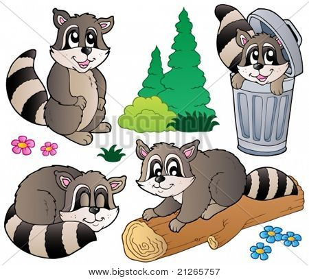 Cartoon racoons collection - vector illustration.