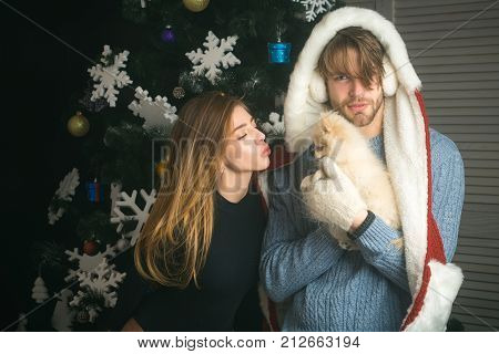 Christmas happy woman and guy with pet. Party celebration and christmas. New year of dog couple in love hold puppy. santa claus girl and man with pet at tree. Dog year winter holiday and xmas.