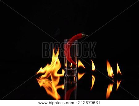 Stack of tequila on fire. Red burning pepper in a glass with alcohol also burns with fire in black background