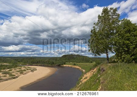 Birch on the edge of steep coast of the river. River views Vaga near the village of Undercity, Velsky district, Arkhangelsk region, Russia