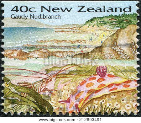 NEW ZEALAND - CIRCA 1996: A stamp printed in New Zealand shows Gaudi Nudibranch circa 1996