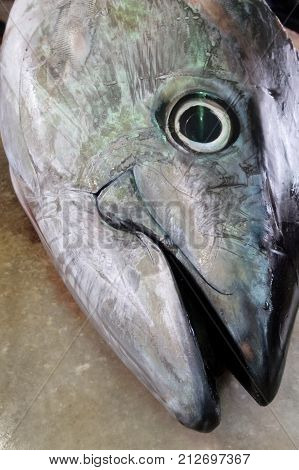 Head Of Saltwater Fish Tuna Placed On A Table On The Market.