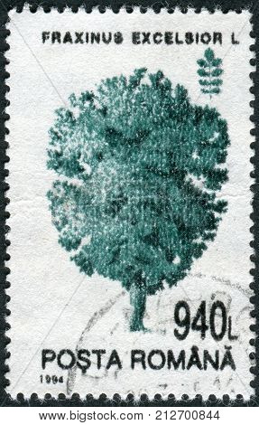 ROMANIA - CIRCA 1994: Postage stamp printed in Romania shows a tree Common Ash (Fraxinus excelsior) circa 1994