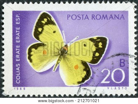 ROMANIA - CIRCA 1969: Postage stamp printed in Romania shows butterfly Eastern Pale Clouded Yellow (Colias erate) circa 1969