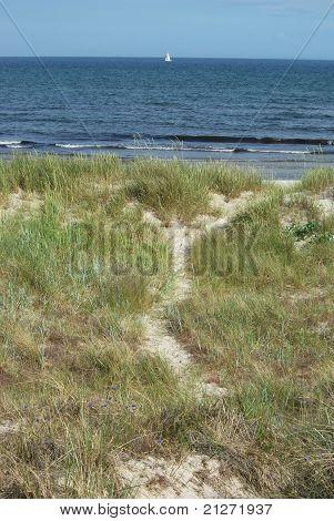 Sanddune at beach