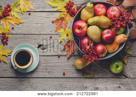 Autumn harvest and thanksgiving card background. Coffee cup, various fruits, rowan, apples, pears in old metal basin and fall leaves on weathered rustic wood with copy space, top view
