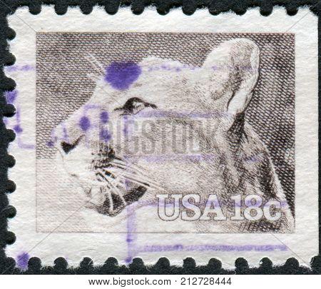USA - CIRCA 1981: A postage stamp printed in USA shows the cougar (Puma concolor) circa 1981