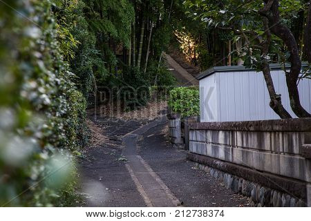A walking path leads up a forested hill in Yamato Japan. In Japan walkways like this are common public walkways.