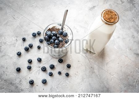 How to eat chia seeds. Dessert with yogurt, chia and blueberries on grey background.