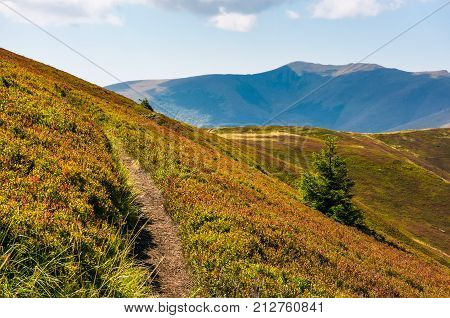 Path Though Mountain Hills And Ridge