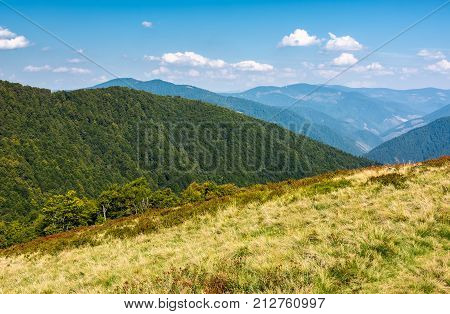 Lovely Mountainous Landscape In Early Autumn