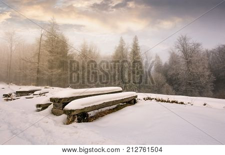 Abandoned Camping Place In Winter Forest