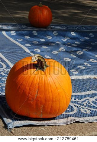 Large pumpkin on ground cloth as part of holiday decorating scheme.
