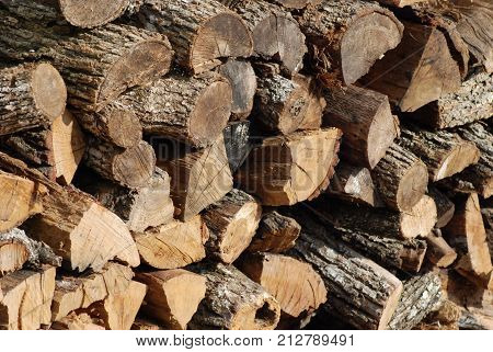 A large pile of firewood, cut and ready to use.
