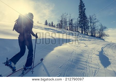 Back country skiing. Ascending off piste on snow.