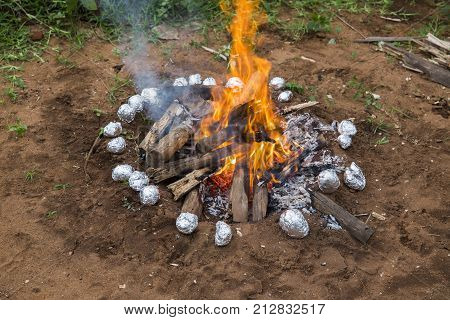 Burning wood in a brazier potatoes in aluminium foil in the garden India
