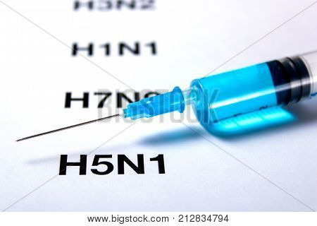 H5N1 Virus Influenza Virus Replication Cycle and syringe with vaccine