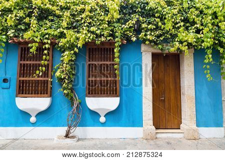 A tree grows along the wall of a colonial style building in Cartagena Colombia. poster