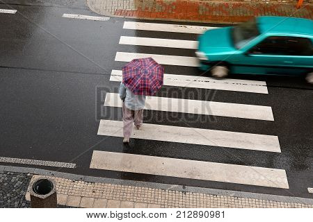 Pedestrian Crossing in the Rain. Top View.