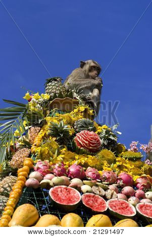 Monkeys are feeding themselves in the annual feast held for monkeys in Lopburi Thailand. Fruits and vegetables are offered to monkeys during the annual festival to help promote tourism in the area. poster