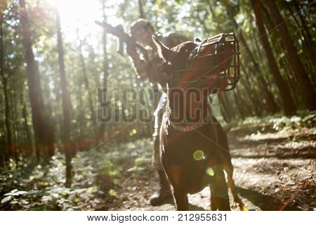 Photo of airsoft player with dog and submachine gun in forest on reconnaissance
