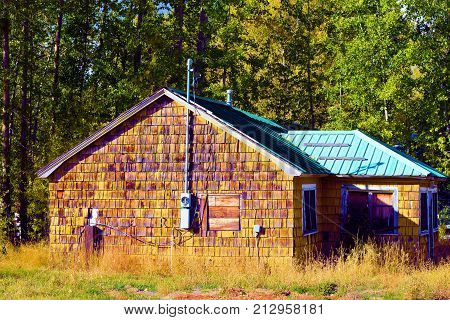 Haunting image of an abandoned house surrounded by a pine forest taken in an economically depressed forgotten community