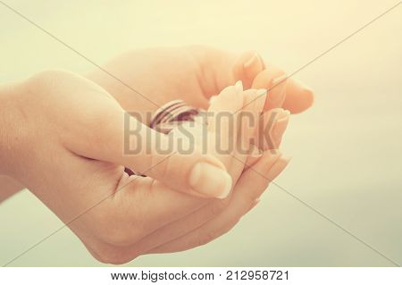 Handful Of Coins In Palm Female Hands. Concept Of Saving And Passive Income . Instagram Toned