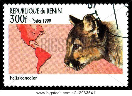 STAVROPOL RUSSIA - November 08 2017 : A Postage Stamp Printed in the Benin shows puma jaguar (Felis concolor) circa 1999