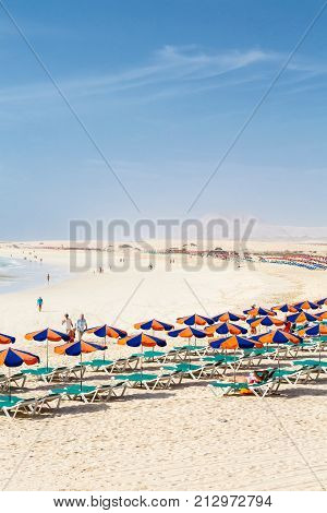 FUERTEVENTURA SPAIN - CIRCA 2013: Row of sunbeds and parasols on sandy beach Bajo Negro Fuerteventura Canary Islands
