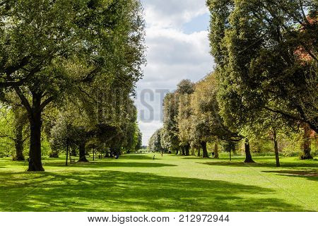 LONDON UK - CIRCA 2014: Syon Vista an avenue of trees at Kew Botanic Gardens