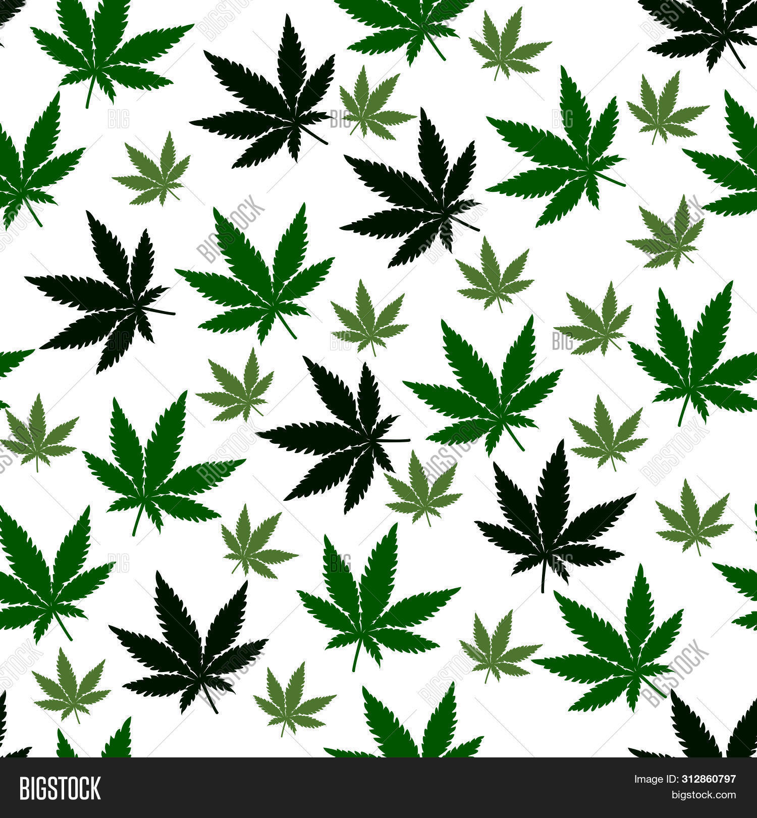 Cannabis Leaves Vector Photo Free Trial Bigstock