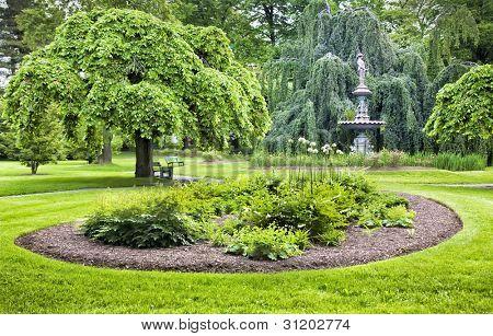 A Camperdown Elm (botanical name Ulmus glabra camperdownii) tree overlooks a perennial bed in a green garden.