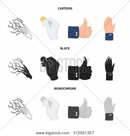 Vector Design Of Animated And Thumb Sign. Set Of Animated And Gesture Vector Icon For Stock.