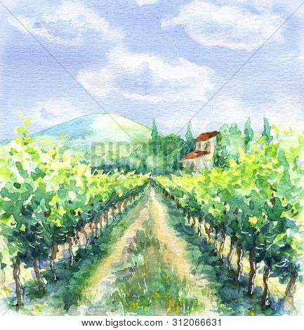 Hand Drawn Rural Scene With Blue Sky, Clouds, Vineyard And Hill. Summer Landscape Watercolor Sketch.