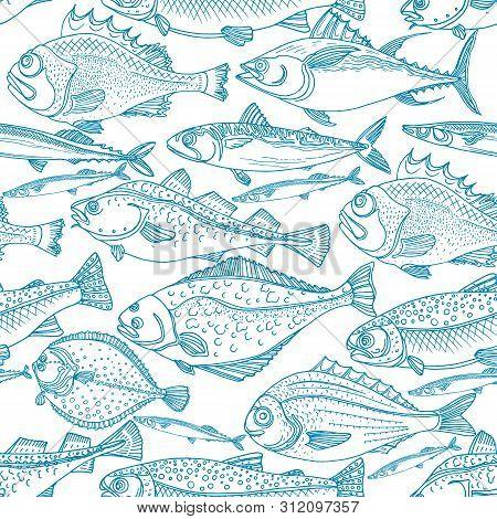 Sea fish. Marine vector seamless pattern Perch, cod, mackerel, flounder, saira Doodle art line design Vintage sketch illustration  Fresh food Background for print, textile, packing poster