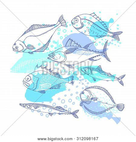 Sea fish. Marine underwater vector background. Perch, cod, mackerel, flounder, saira. Doodle art line design. Sketch set, blue color illustration. Fresh food. Modern template for print, packing poster