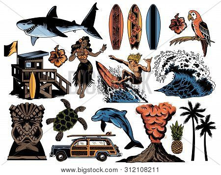 Summer Paradise Surfing Vintage Retro Set Icons Colorful Collection With Sea Ocean Animals Wave Palm