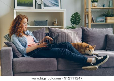 Young Woman Freelancer Is Working With Laptop Typing Sitting On Sofa At Home With Cute Dog Lying Nea