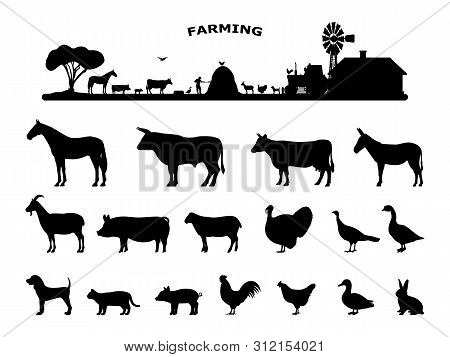 Set Silhouettes Domestic Farm Animals. Collection Rural Animals. Concept Of Farming And Livestock. V
